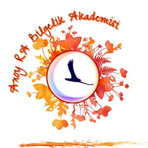 Axoy RA Bilgelik Akademisi