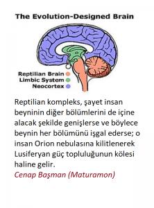 R-kompleks