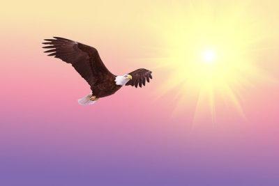 Nizami bilinç ve sahip olduğu kavram – Ra Monyas Kferya